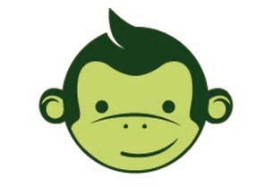 Le co-voiturage avec Green Monkeys