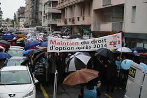 Manifestation des frontaliers dimanche 20 octobre 2013